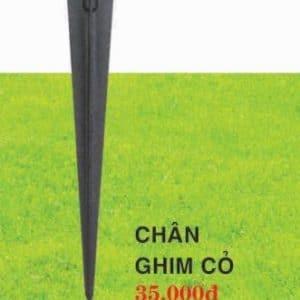 Chan Ghim Co
