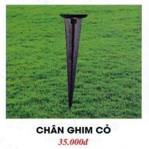 Chan Ghim Co 2