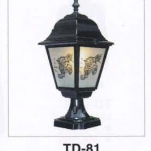 Den Vach Ngoai Troi Td 81
