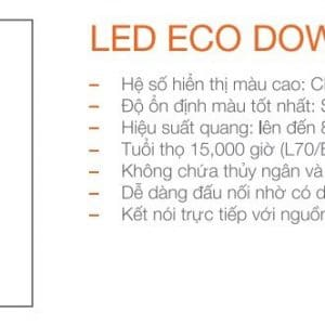 Led Eco Downlight 15w