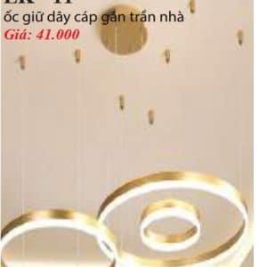 Oc Giu Day Cap Gan Tran Nha Lk 11